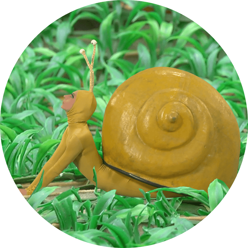 2-caracol